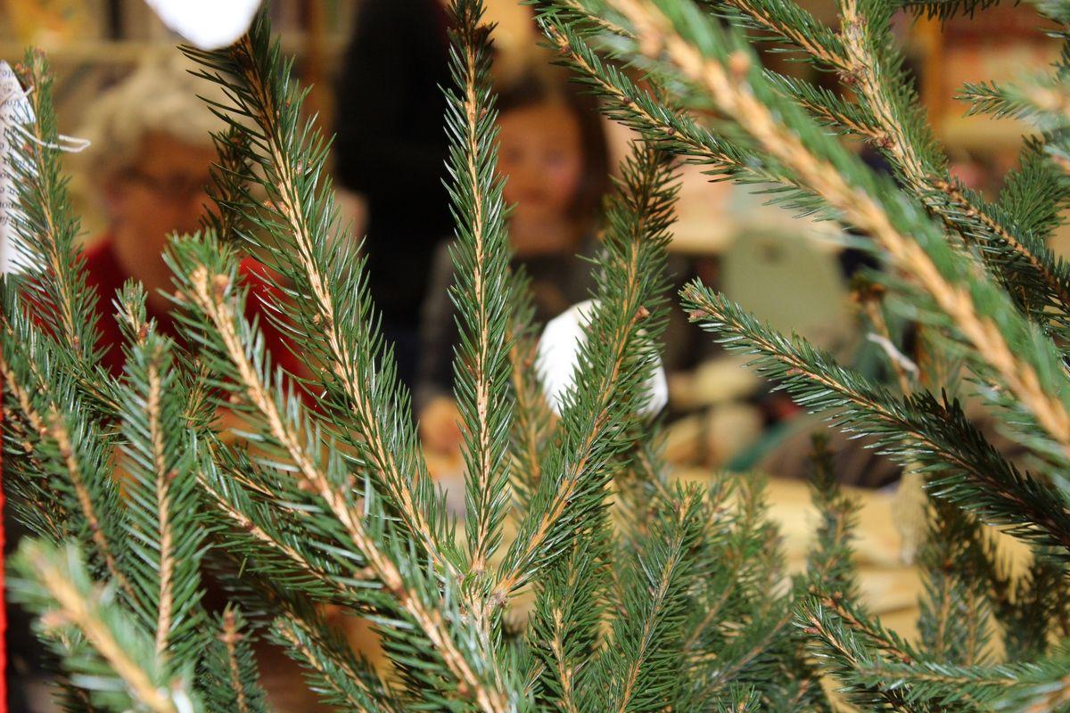 Animation décoration de Noël à la médiathèque